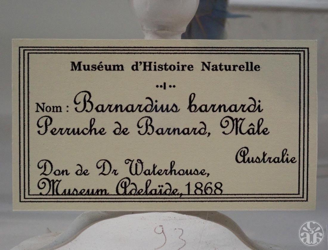 Museum de Saint-Denis