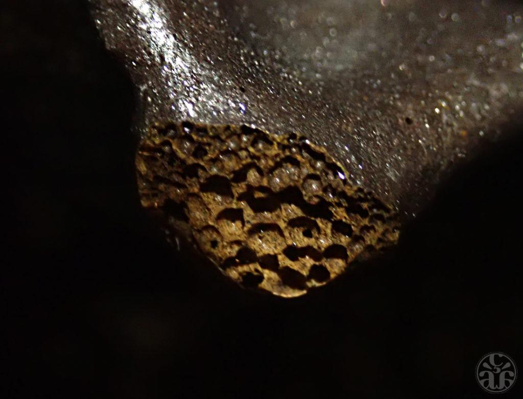 Des bulles de gaz ont été enfermées dans la lave