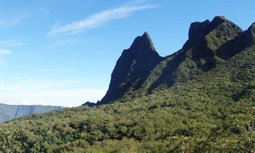 Preview article 2 Réunion