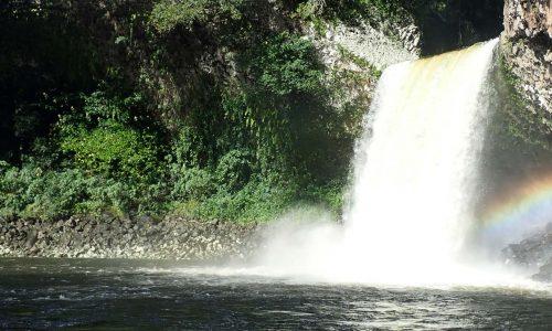 Preview article 4 Réunion