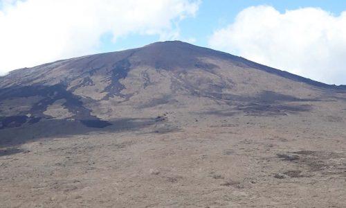 Preview article 8 Réunion